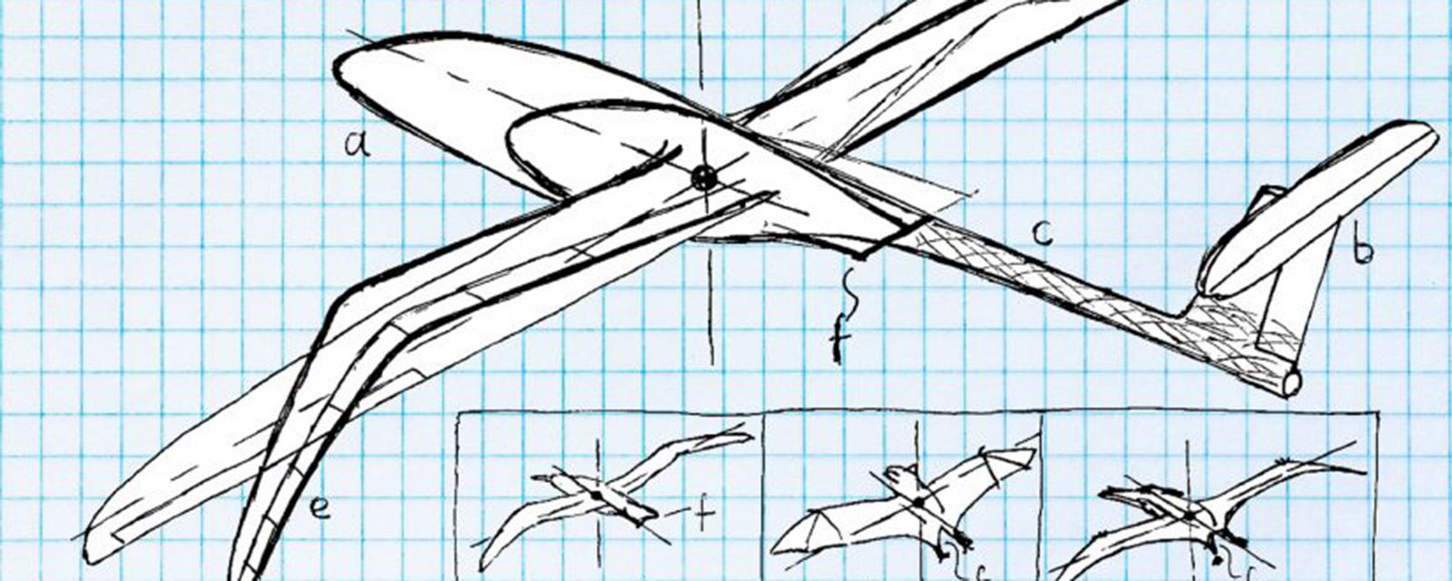 Illustration of a birdlike aircraft