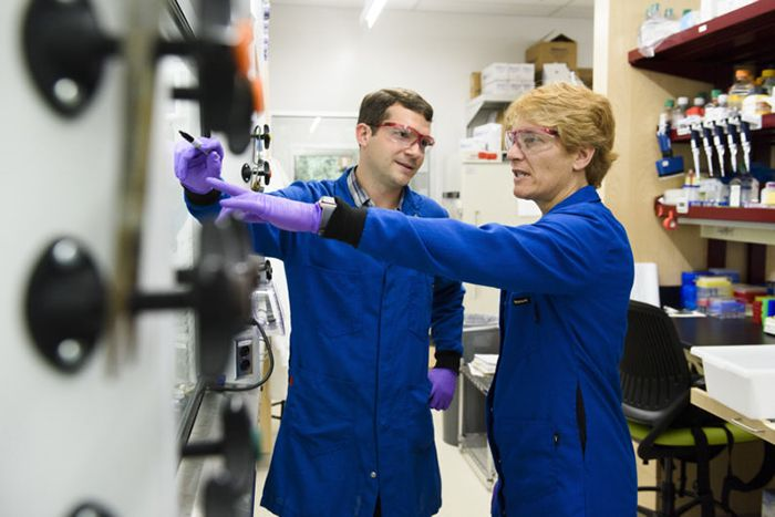 Fred Tomlin works in the lab with professor Carolyn Bertozzi.