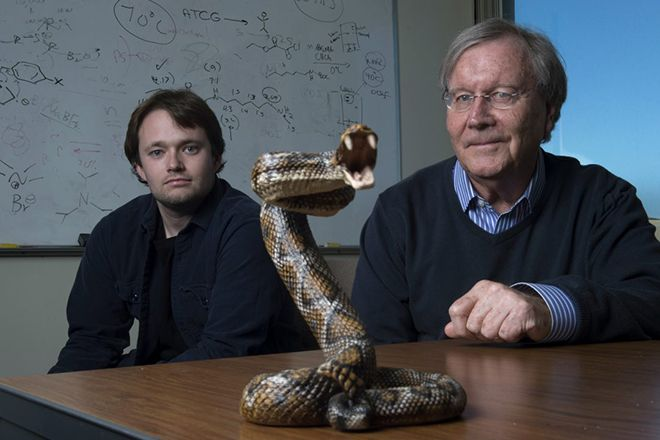 UCI chemistry professor Ken Shea and doctoral student Jeffrey O'Brien